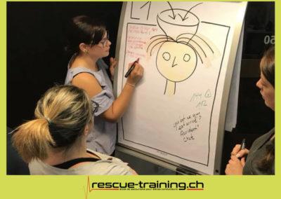 Rescue-training école de secourisme idem samaritains sauveteur permis de conduire entreprises BLS AED petite enfance Valais Lucien Cottier Street-L auto-école Riddes.005